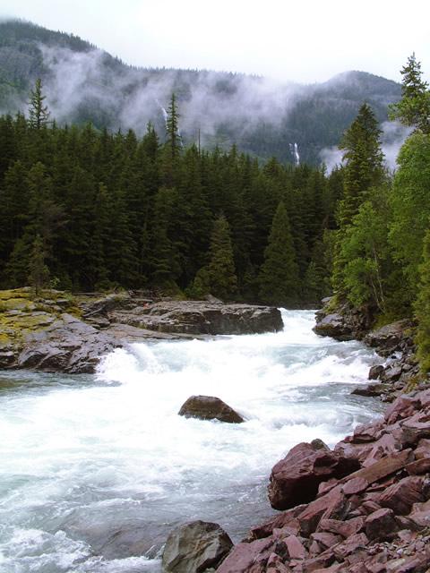 グレイシャー国立公園の画像 p1_9