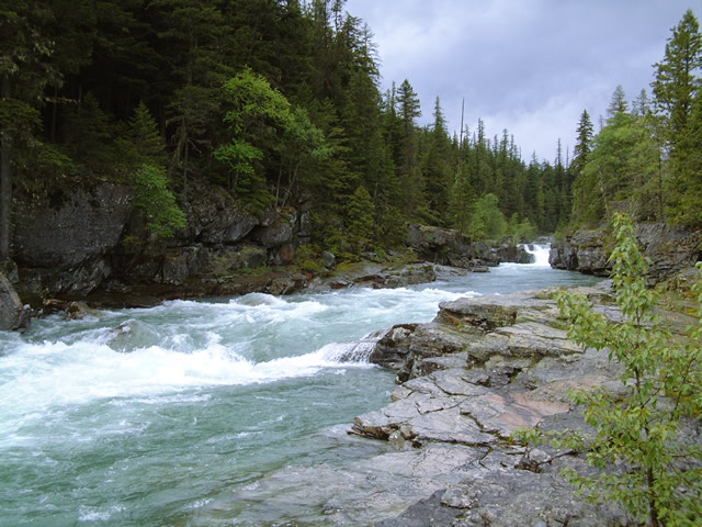 グレイシャー国立公園の画像 p1_14