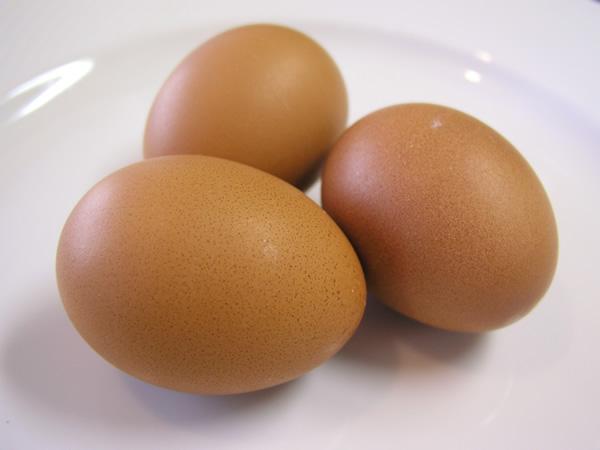 卵(たまご) 食・食材・料理のフリー写真素材 無料画像013