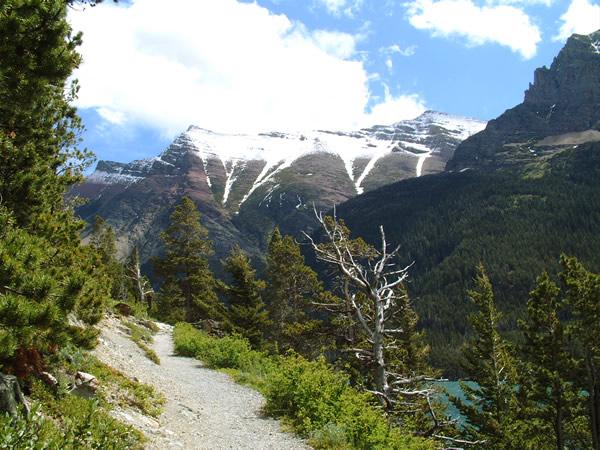 グレイシャー国立公園の画像 p1_3