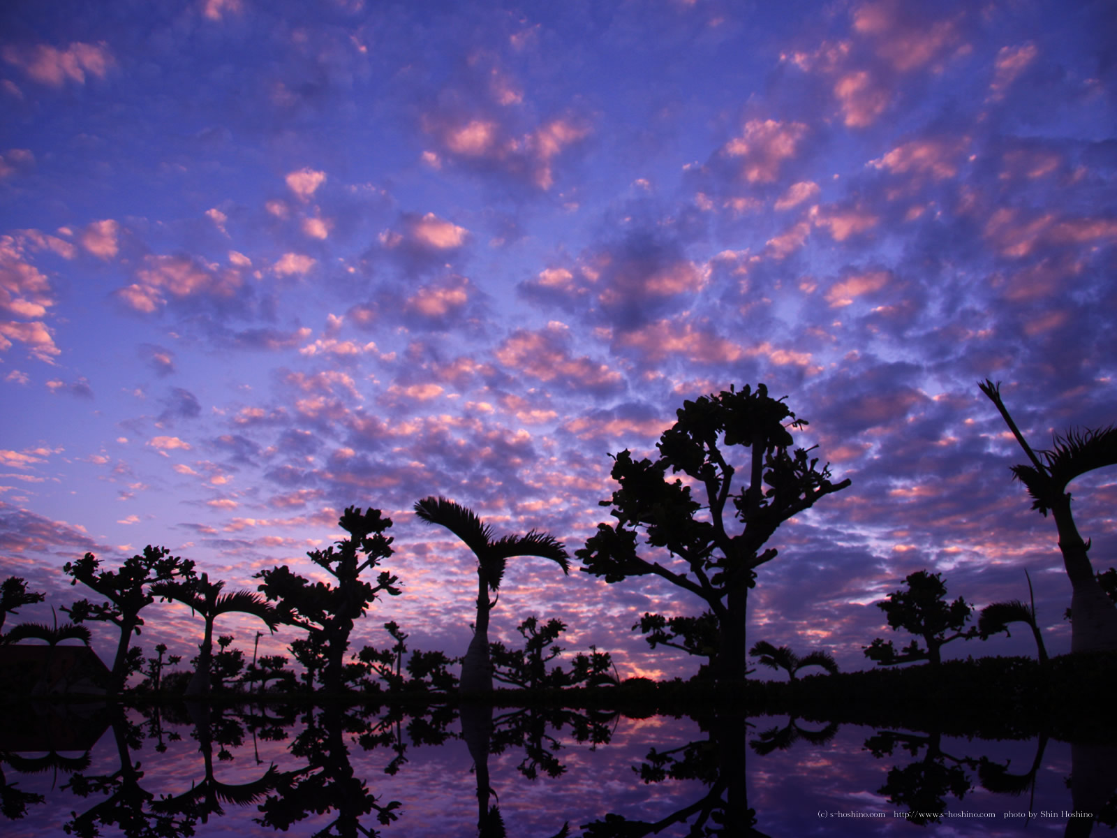 風景の画像 p1_32